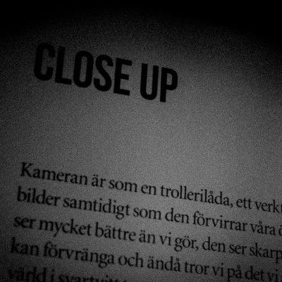 #41 Close-up
