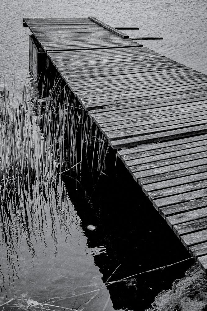 Bridge2016w20bw