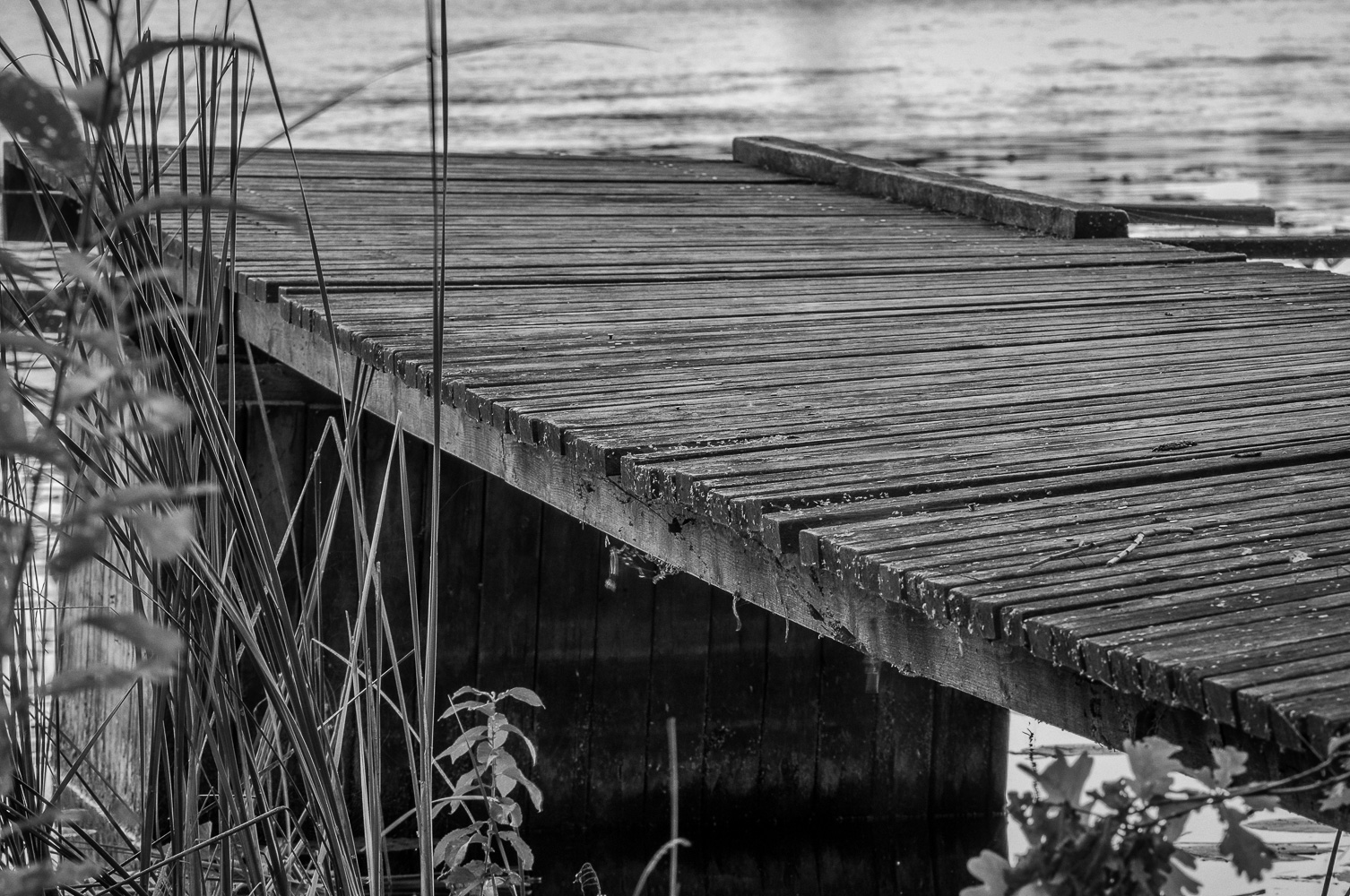 Bridge2016w35bw
