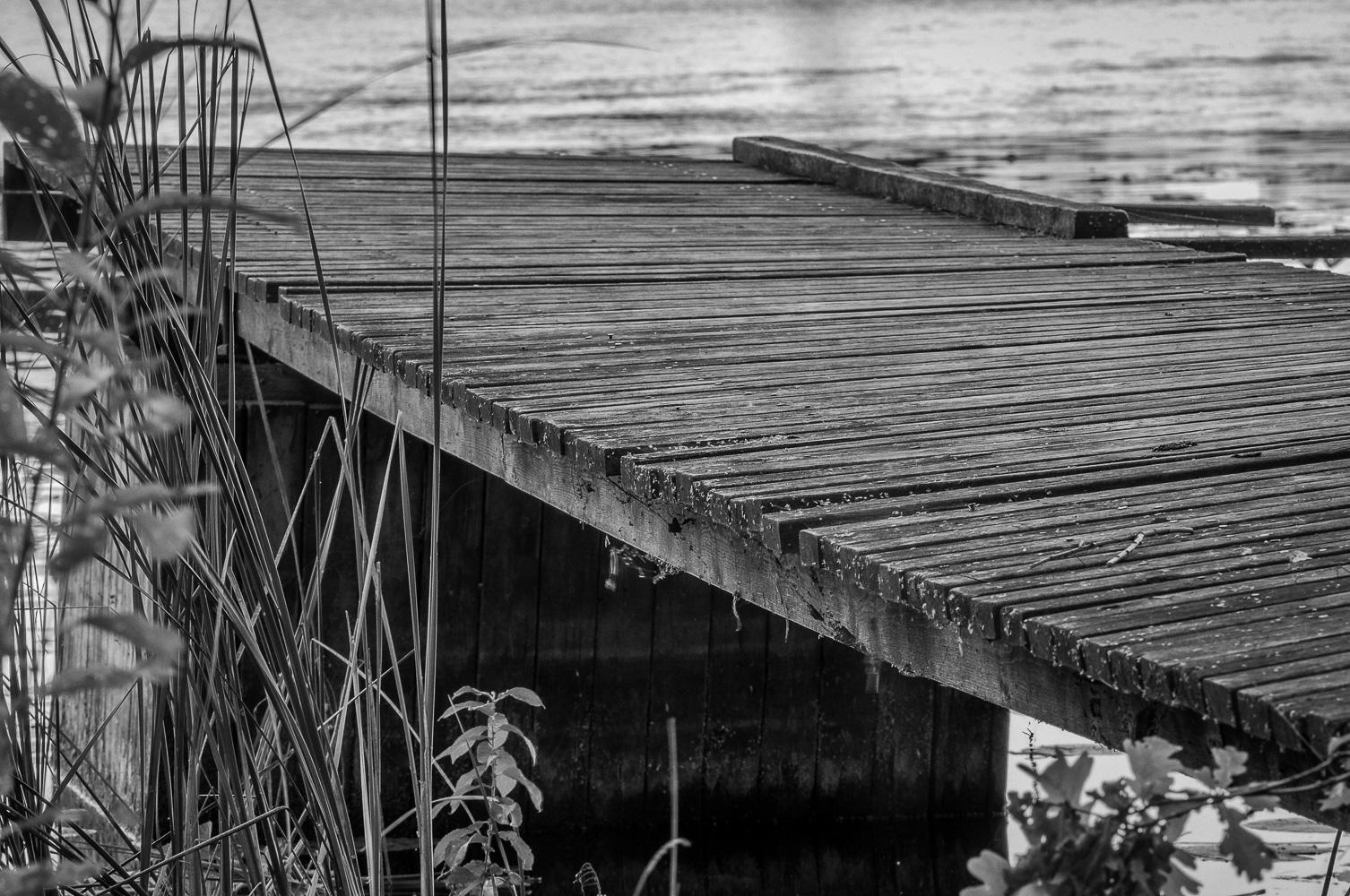 Bridge2016w35bw
