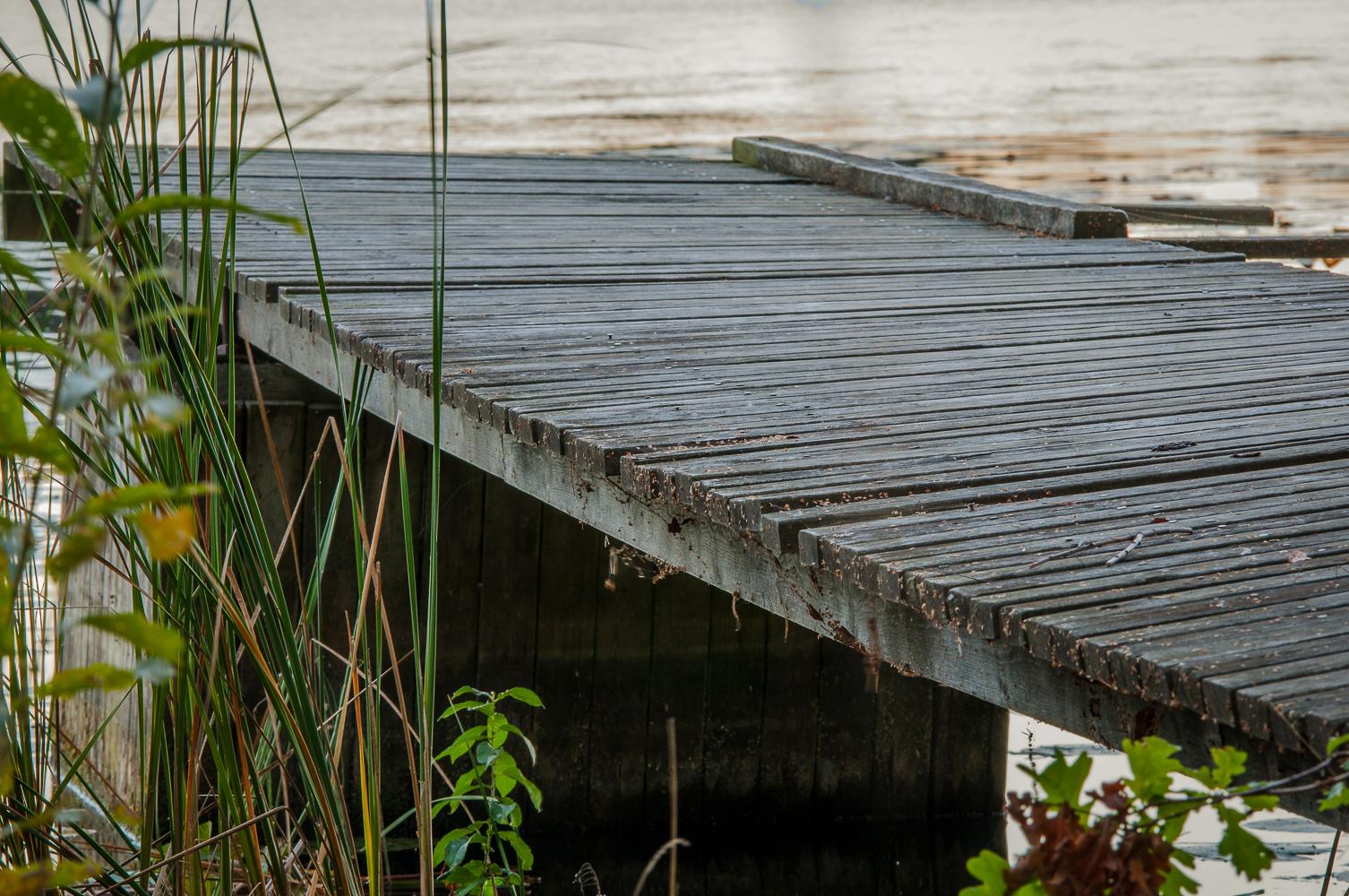 Bridge2016w36c